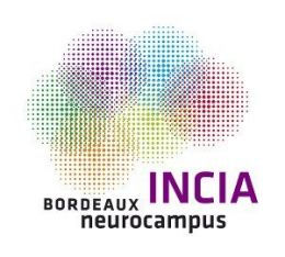 Institute for Cognitive & Integrative Neuroscience Aquitaine
